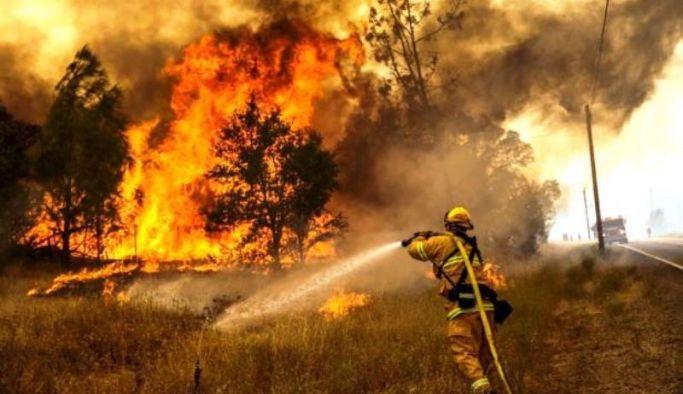 İtfaiyeden orman yangını uyarısı