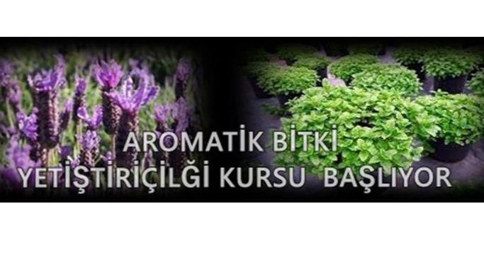 Aromatik Bitki Yetiştiriciliği kursu başlıyor