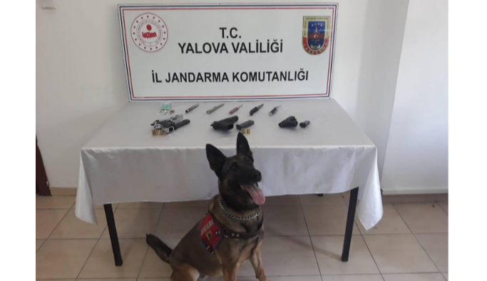 Jandarma operasyonu başarıyla sonuçlandı