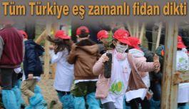 Tüm Türkiye eş zamanlı fidan dikti