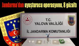 Jandarma'dan uyuşturucu operasyonu, 8 gözaltı