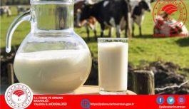Çiğ Süt Desteği ve Süt Piyasasının Düzenlenmesi tebliği yayınlandı