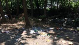 Esenköy'de ki şelale alanının kirletilmesi...