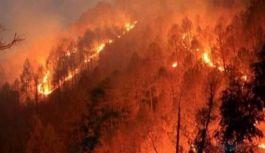 İtfaiye, orman yangınlarına karşı uyardı