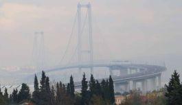 Osmangazi Köprüsü, kuşların geçiş...