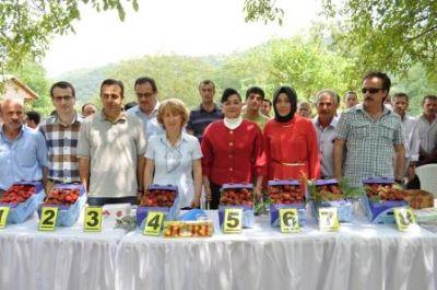 7. Çilek Festivali gerçekleşti
