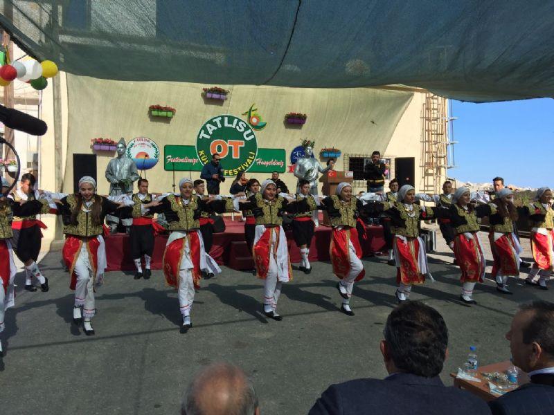 Tatlısu'da 2. Ot Festivali gerçekleştirildi