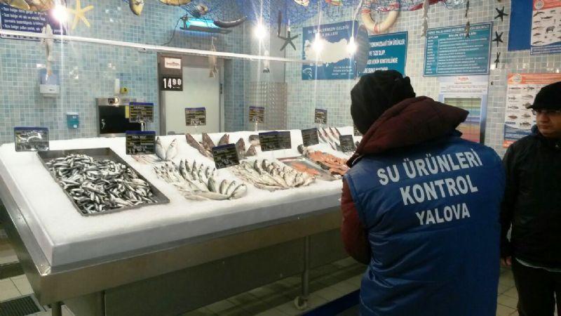 Yalova ve Bursa balıkçılık sektörü denetlendi