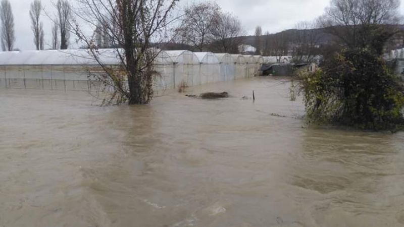 Kadıköy'de seralar su altında kaldı, zarar büyük