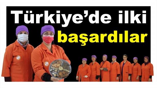 Türkiye'de ilki başardılar